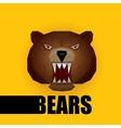 cartoon bear grizzle icon bear muzzle vector image