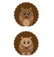 cute hedgehogs vector image