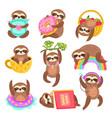 cute sloths funny sleepy sloth isolated wild vector image vector image