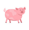 funny pig flat isolated on vector image vector image
