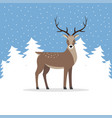 reindeer with antler on background of trees vector image vector image