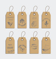 set of organic food tag and label sticker design vector image