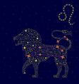 Zodiac sign Leo over starry sky vector image vector image