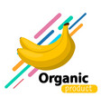 banana simple background vector image vector image