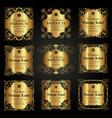 set luxury ornate gold labels vector image