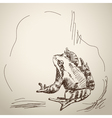 Sketch of frog vector image vector image