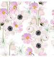 white pink anemone and pink autumn flower vector image vector image