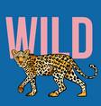 wild leopard print vector image vector image