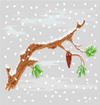 Branch of Christmas tree with snowflakes vector image vector image