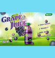 grape juice bottle with sunny background on green vector image