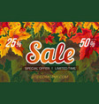 web banner design with sale promotion vector image vector image