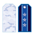 blue military shoulder straps vector image vector image