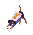 cute dog wearing superhero costume playing with vector image