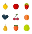 Farm fruits icons set flat style vector image vector image