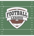 Football Label on green Field Background vector image