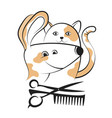 grooming dogs and cats silhouettes vector image vector image