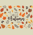 hello autumn banner season design vector image