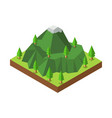 isometric mountain and trees vector image