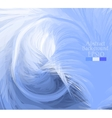 Macro feathers White blue dark blue vector image vector image