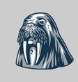 ocean walrus for marine nautical logo design vector image vector image