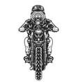 vintage ferocious tiger head biker vector image vector image