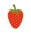 white background of strawberry fruit to color vector image
