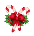 christmas candy cane with other decorative element vector image