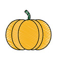 color crayon stripe orange pumpkin fruit food vector image vector image