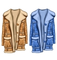 Dressing gowns in two colors blue and brown vector image