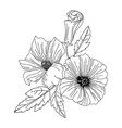 hibiscus flower modern botanical drawing for vector image vector image