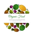 Organic food fruits banner vector image