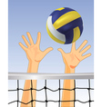Volleyball vector | Price: 1 Credit (USD $1)