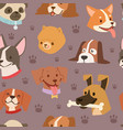 dogs heads seamless pattern background vector image