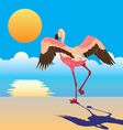 flamingo on the shore vector image vector image