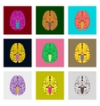 icons set in flat style human brain vector image
