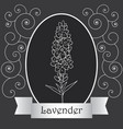 lavender-06 vector image