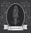 lavender-06 vector image vector image