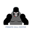 Primate call center Monkey and headset Gorilla vector image vector image