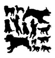 pyrenean shepherd dog silhouettes vector image vector image