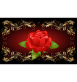 red rose with golden ornament vector image vector image