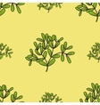 Seamless pattern with mistletoe twigs vector image