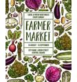 sketch poster for vegetables farm market vector image vector image