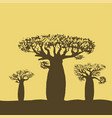three baobabs at sunset or sunrise vector image vector image