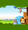 wild animals background vector image