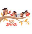 back to school cute cartoon baby owls and teacher
