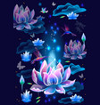 background with lotus flowers and hummingbirds vector image