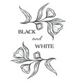 black and white flowers flora monochrome sketch vector image