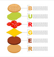 Burger infographics Structure of hamburger vector image