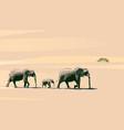 elephants vector image vector image