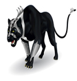 militant black panther vector image